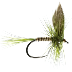 Olive Dun - Winged Trout Dry Flies