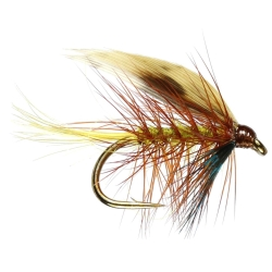 Invicta - Winged Trout Wet Flies