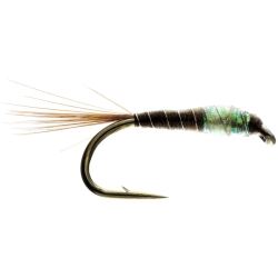 PNT Fry Nymph - Unweighted Trout Flies