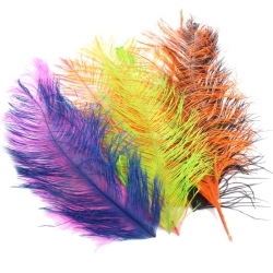 Franc N Snaelda Signature Intruder Hackles Feathers - Fly Tying Materials