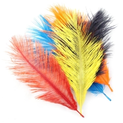Franc N Snaelda Small Intruder Hackles Feathers - Fly Tying Feathers