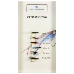 Sea Trout - Fly Selection Pack